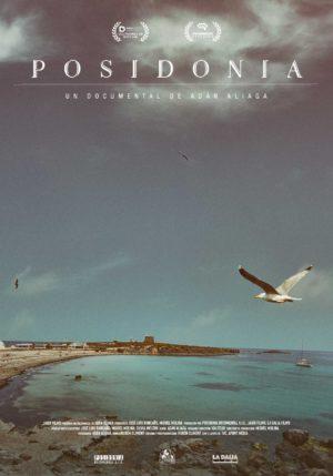 Posidonia_ENERO2019_web